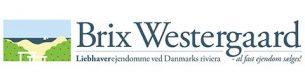 Brix Westergaard